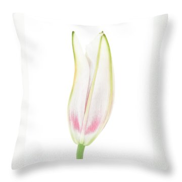 Lily In The Snow Throw Pillow