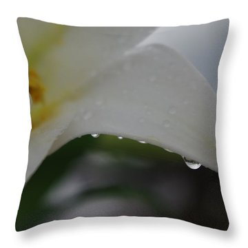 Lily Of Tears Throw Pillow by Robyn Stacey