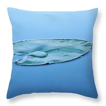 Throw Pillow featuring the photograph Lily Pad In The Sky by Gerald Strine