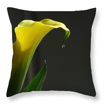 Lily Pitcher Throw Pillow