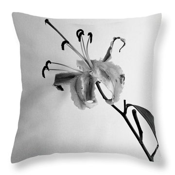 Throw Pillow featuring the photograph Lily by Pravine Chester