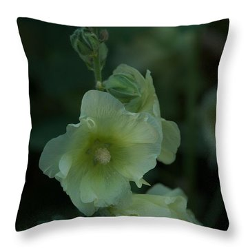 Throw Pillow featuring the photograph Lime by Joseph Yarbrough