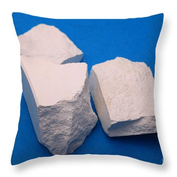 Lime Made From Marble Throw Pillow by Ted Kinsman