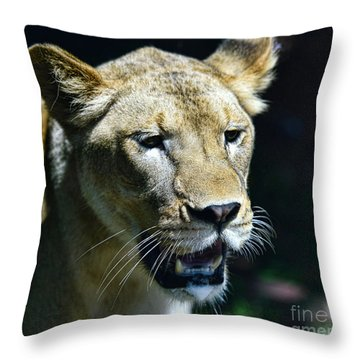Lion - Endangered Species - Wildlife Throw Pillow by Paul Ward
