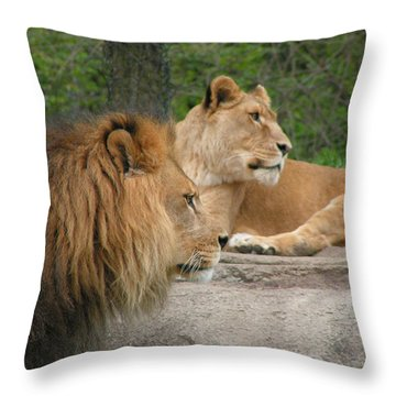 Lion And Lioness On Lookout Throw Pillow