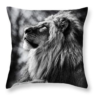 Lion Meditating Throw Pillow