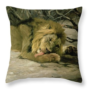 Lion Reclining In A Landscape Throw Pillow by Wilhelm Kuhnert