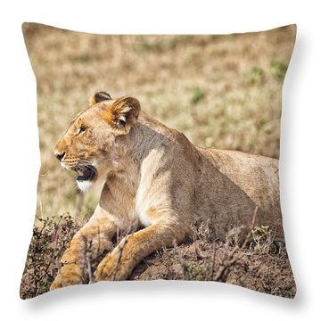 Lioness Relaxing Throw Pillow