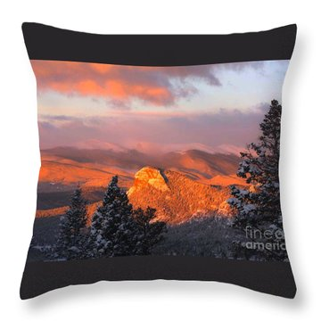 Lion's Head II Throw Pillow