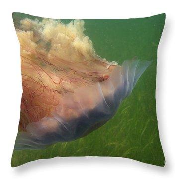 Lions Mane Jellyfish Throw Pillow