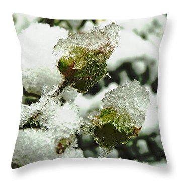 Throw Pillow featuring the photograph Liquid Crystal  by Steve Taylor