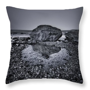 Liquid State Throw Pillow by Evelina Kremsdorf