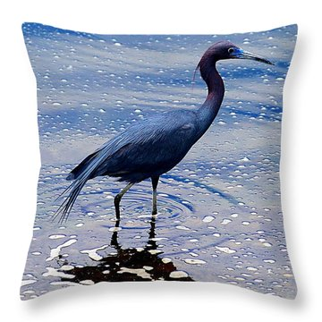 Throw Pillow featuring the photograph Lit'l Blue by Elizabeth Winter