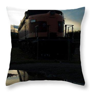 Littel Joe Reflections Throw Pillow by Tim Mulina