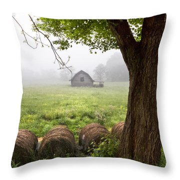 Little Barn Throw Pillow by Debra and Dave Vanderlaan