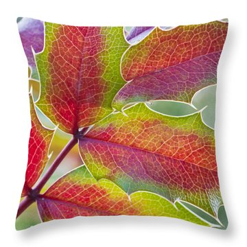 Little Bit Of Autumn Throw Pillow by Heidi Smith