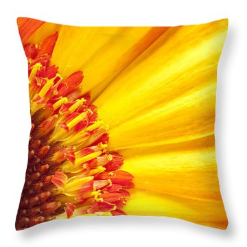 Little Bit Of Sunshine Throw Pillow by Eunice Gibb