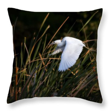 Little Blue Heron Before The Change To Blue Throw Pillow by Steven Sparks