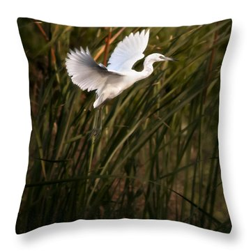 Little Blue Heron On Approach Throw Pillow by Steven Sparks