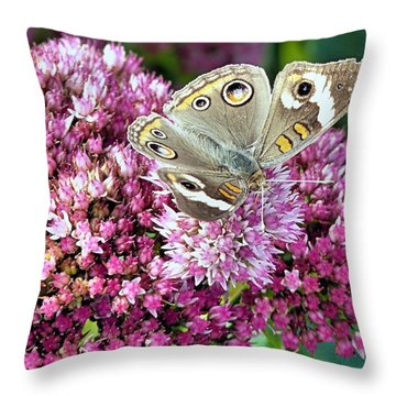 Throw Pillow featuring the photograph Little Butterfly by Janice Drew