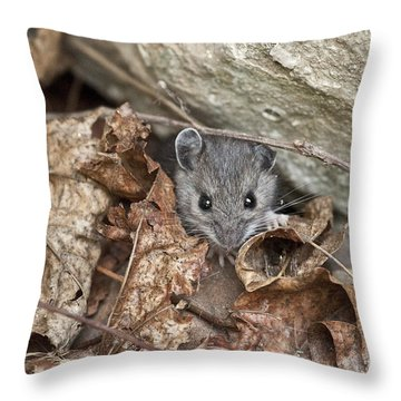 Little Creatures Need Love Too Throw Pillow