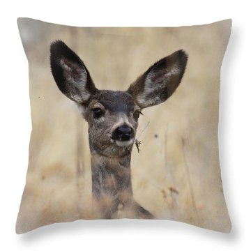 Throw Pillow featuring the photograph Little Fawn by Steve McKinzie