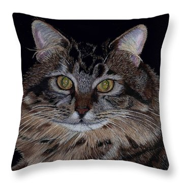 Little Girl - Maine Coon Cat Painting Throw Pillow by Patricia Barmatz