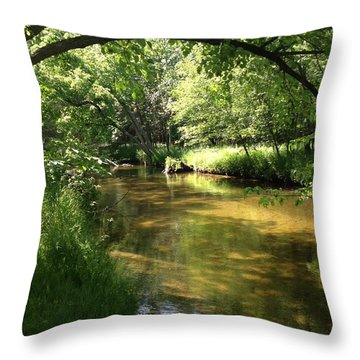 Little South Arch Throw Pillow