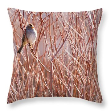 Little Sparrow Throw Pillow by Sabrina L Ryan