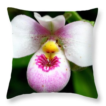 Little White And Pink Orchid Throw Pillow by Laurel Talabere
