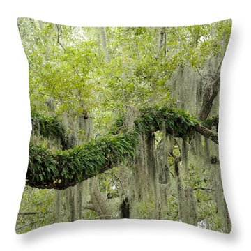 Throw Pillow featuring the photograph Live Oak With Ferns And Spanish Moss by Bradford Martin
