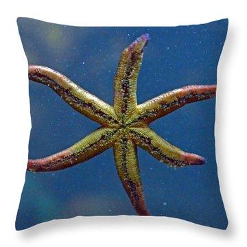 Live Starfish Throw Pillow by Sandi OReilly