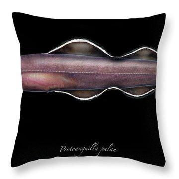 Living Fossil Eel - Protoanguilla Palau - By Maassen-pohlen Throw Pillow