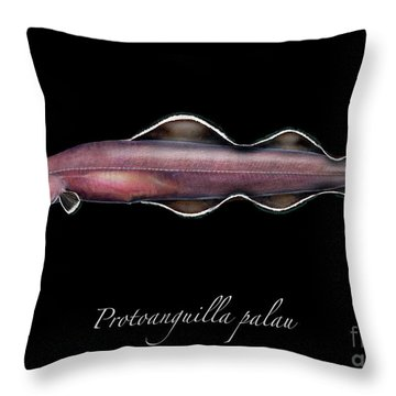 Living Fossil Eel - Protoanguilla Palau Throw Pillow