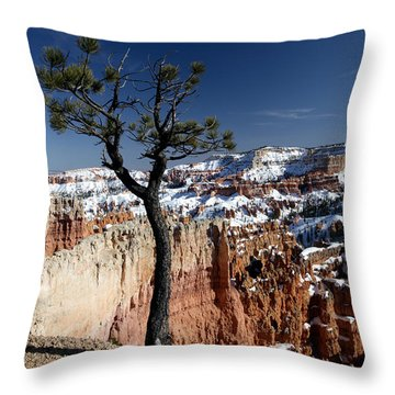 Throw Pillow featuring the photograph Living On The Edge by Karen Lee Ensley