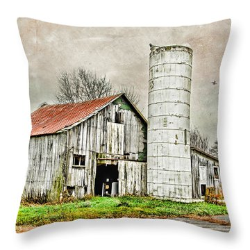 Throw Pillow featuring the photograph Lone Barn by Mary Timman