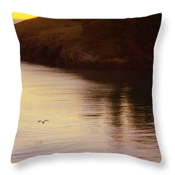 Lone Bird At Rosario Beach Point Throw Pillow by Randall Thomas Stone