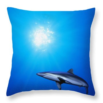 Lone Shark Illuminated By Underwater Throw Pillow by Carson Ganci