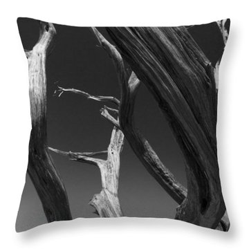 Throw Pillow featuring the photograph Lone Tree by David Gleeson