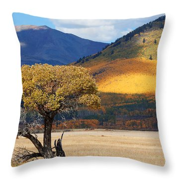 Throw Pillow featuring the photograph Lone Tree by Jim Garrison