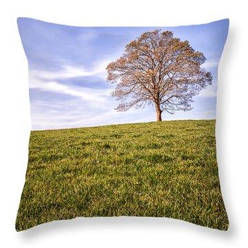 Lone Tree On The Hill Colour Throw Pillow by John Farnan