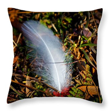 Lonely Feather Throw Pillow by Doug Long