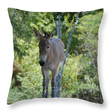 Lonely Throw Pillow by Rob Hans