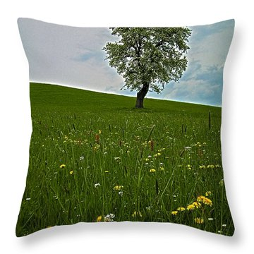 Lonely Tree ...  Throw Pillow