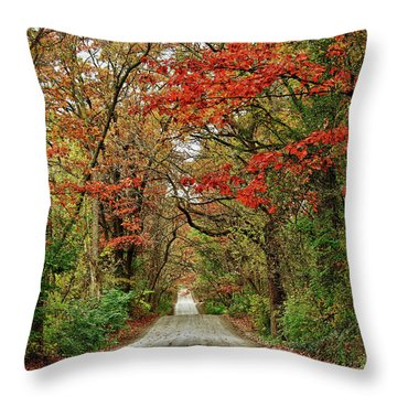 Throw Pillow featuring the photograph Long Bumpy Dirt Road by Rachel Cohen