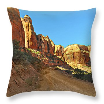 Long Canyon 1 Throw Pillow by Marty Koch