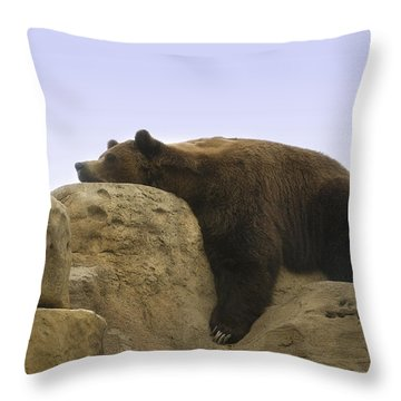 Long Day Throw Pillow by Kat Besthorn