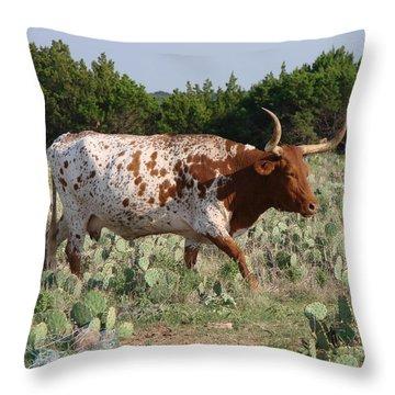 Longhorn In Cactus Throw Pillow