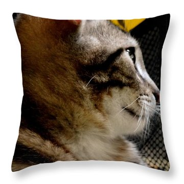 Throw Pillow featuring the photograph Look To The Light by Lisa Brandel