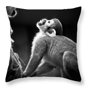 Look Up Throw Pillow by Darcy Michaelchuk
